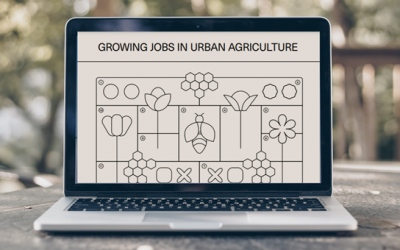 """New playbook """"Growing Jobs in Urban Agriculture"""" offers practical insights into developing sustainable business models in urban agriculture"""
