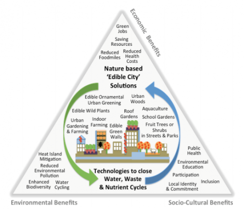 Triangle – Examples for nature-based ECS and benefits.