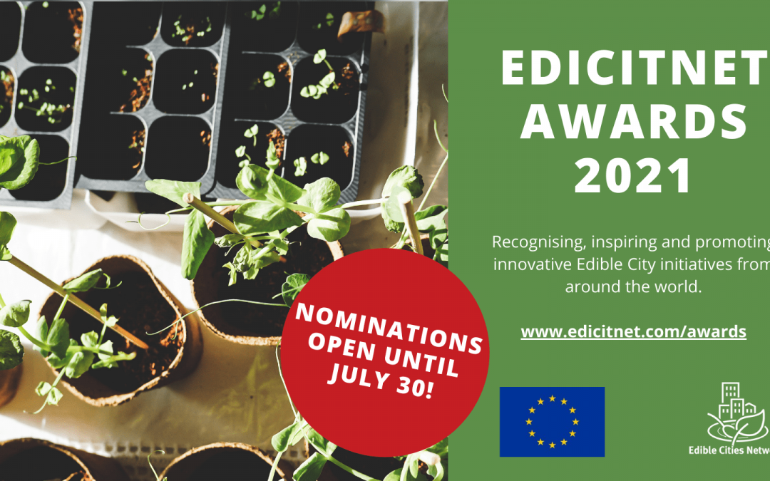 APPLICATIONS FOR THE EDICITNET AWARDS 2021 ARE NOW OPEN