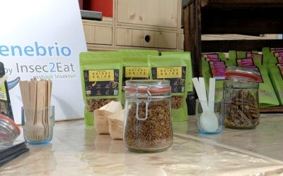 EdiCitNet explores alternative insect proteins at the Open Humboldt Festival