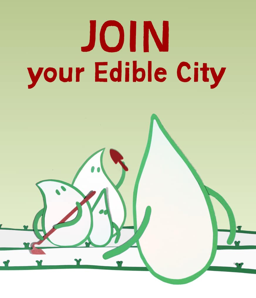 Rejoins ton Edible City