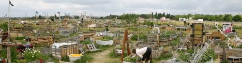 Join_your_edible_city_Tempelhofer_Feld_urban_gardening_1