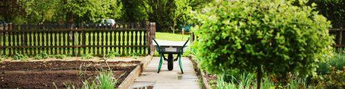 Join_your_edible_city_wheelbarrows-2157335