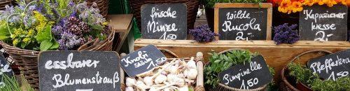 Make_biz_with_ECS_market-1547290