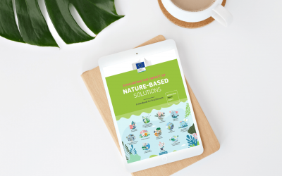 EdiCitNet's work on NBS impact monitoring featured in new European Commission handbook