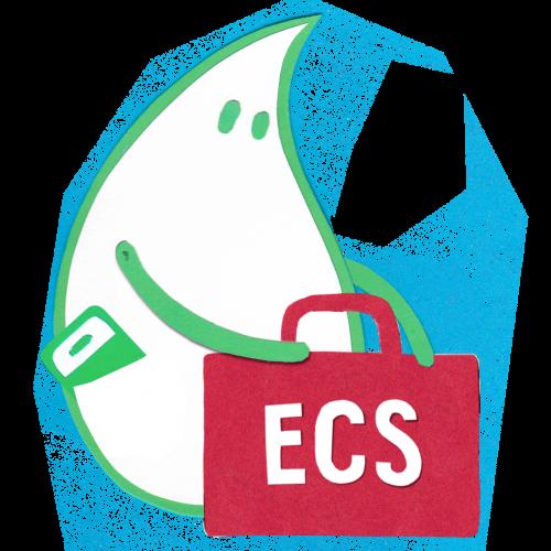 pic-overlay_ecs